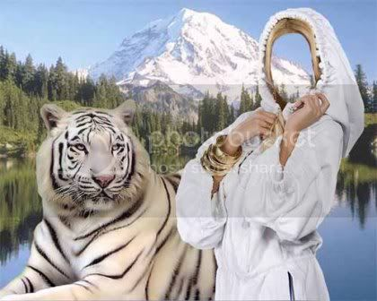 A girl and a white tiger - Template for Photoshop